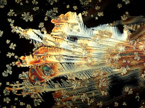 Crystals of vitamin C in a polarizing microscope (250x magnification in A3) by Doc. RNDr. Josef Reischig, CSc. / Wiki Commons *